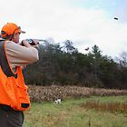 Upland Bird Hunting by Wayne Hughes