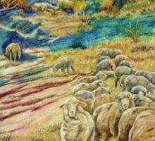 Sheep In the Creek - Dumbleyung Sticker