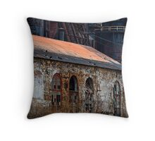 Iconic Entropy Throw Pillow