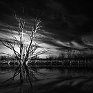 Simply Black & White - Varinia _ Globalphotos by Varinia   - Globalphotos