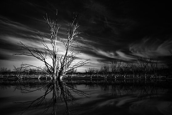 Desolation by Varinia   - Globalphotos