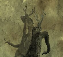 Adversary-Dance by L J Fraser