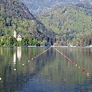 Rowing tracks on lake Bled - Slovenia by Arie Koene