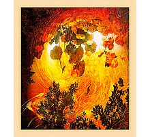 forest flash fire... ancient times Photographic Print