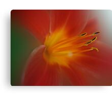 The Core of the Soul Canvas Print