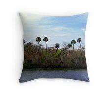 St.Johns River FLorida Throw Pillow