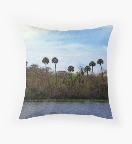 St.Johns River FLorida Throw Pillow