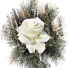 WHITE ROSE FOR COLLEEN by fyre