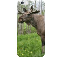 Moose iPhone Case/Skin