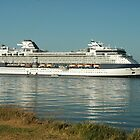The Millenium Cruiseship - Newcastle Harbour NSW Australia by Phil Woodman