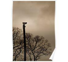 Solo Camera Poster