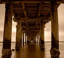 Dusk Under Seaford Pier in Sepia by Jason Green