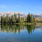 Talbot Lake,  Jasper National Park by Teresa Zieba