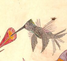 Hummingbird by TedMcBurnett