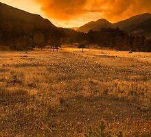 Sunset In Horseshoe Park by John  De Bord Photography