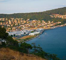 Anacortes Island Marina on Burrows Bay, Washington by Stacey Lynn Payne