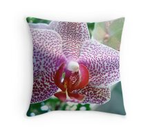 Pink Spotted Orchid Solo Throw Pillow