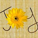 Joy Card by Martie Venter