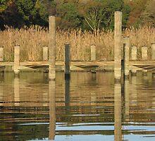 Dock Reflections by Valarie Napawanetz
