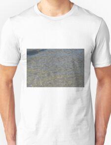 Assateague Adventure Tour Series - 7 T-Shirt