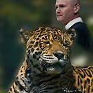 Simon King and Leopard by Daveart