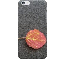 Colorful Autumn Leaf iPhone Case/Skin