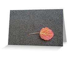 Colorful Autumn Leaf Greeting Card