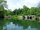 Bridges at Lake Killarney by FrankieCat