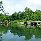 Bridges at Lake Killarney by Susan S. Kline
