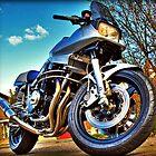 Suzuki Katana 1170 by Mick Smith