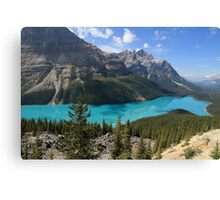Peyto Lake, Banff National Park Canvas Print