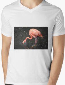 National Aviary Pittsburgh Series - 4 Mens V-Neck T-Shirt