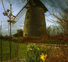 High Ham Windmill by nick board