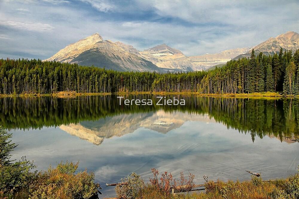 Herbert Lake, Banff NP by Teresa Zieba