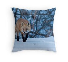 Stalking Around Throw Pillow
