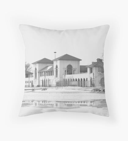Sunnyside!... Throw Pillow