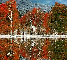 Snowy reflections of Fall by scarlett131