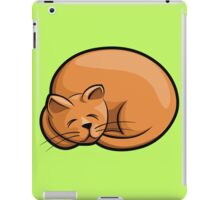Sleeping foxy cat  iPad Case/Skin