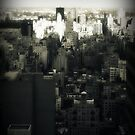NY as seen by a New Yorker by ShellyKay