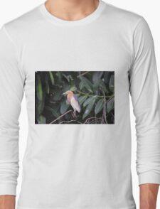 National Aviary Pittsburgh Series - 15 Long Sleeve T-Shirt