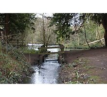 Elvaston Castle Country Park Photographic Print