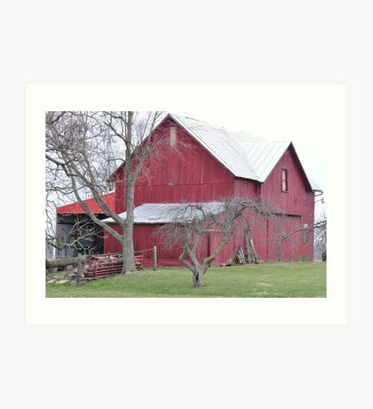 Red barn and bare trees Art Print