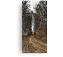 Passageway Canvas Print