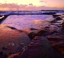 Rock Pool  by Dulcie Dal Molin