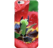 Wet Tulip Delight iPhone Case/Skin