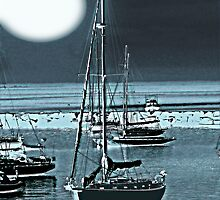 Vineyard Harbor Moon by Dick  Iacovello