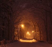 Warm Winter Road by bigj13383