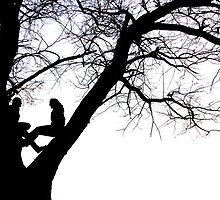 Love in a Tree by Dylan Hamm