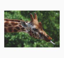 Giraffe by Bethany-Bailey