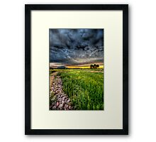 Maverick Flower Framed Print